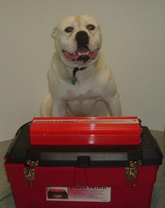 Bull Dog Battery Back Up Power Patrol