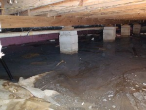 wet damp smelly crawlspace