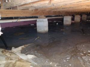 wet damp smelly crawlspace