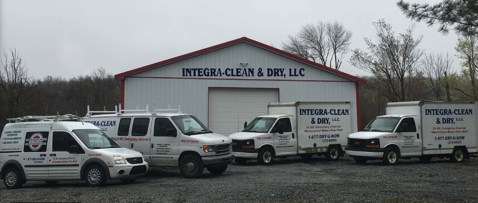 mold removal and basement waterproofing