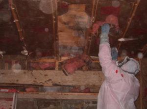 sewage backup cleanup Scranton PA